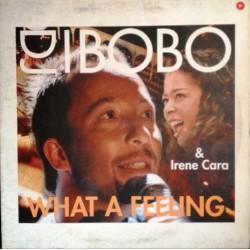 DJ BoBo & Irene Cara – What A Feeling